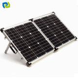 Comitato solare su ordine 10W con le celle monocristalline