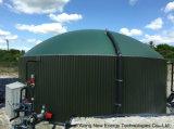 Progetto del biogas in Inghilterra