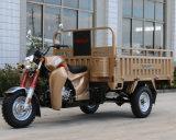 Triciclo del carico del EEC con il grande contenitore di contenitore