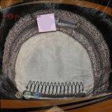 Silk Spitzenfrauen-DeckelHairpiece (PPG-l-01428)