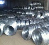 Eletro fio obrigatório galvanizado 7kg do ferro de Bwg 22 (fábrica)