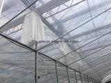 온난한 시스템을%s 가진 조립식 강철 구조물 건축 녹색 집 프레임