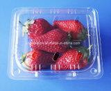 Copertura superiore di plastica a gettare del mirtillo della fragola dei contenitori della frutta