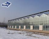 야채와 과일을%s 상업적인 직류 전기를 통한 강철 프레임 정원 유리제 온실