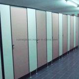 Standaard Grootte 2mm25mm Phenolic Raad van de Hars HPL voor de Verdeling van het Toilet van het Toilet