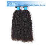 Плетение волос Бразилии Kinky вьющихся волос человека