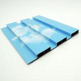 [بلو سكي] وبيضاء سحابة أسلوب 20416 كبيرة [غرت ولّ بنل] خشبيّة بلاستيكيّة مركّب قطاع جانبيّ