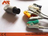 Nihon direktes Kohden schließen 6pin ECG Kabel mit Leitungsdrähten an