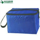 Bolso aislado de lujo superventas del refrigerador del rectángulo de almuerzo (TP-CB262)
