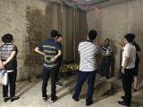 Hochfrequenzschwingung-Technologie-Wand, die Maschine für Aufbau vergipst und überträgt