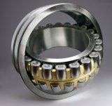 Cuscinetto a rullo cilindrico competitivo di Pirce con il grado di precisione