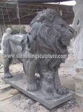 Leone di marmo, leone di pietra intagliato ed animali del marmo (SK-2186)