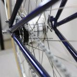 2017의 신제품 고품질 도시 자전거 (CTB18)