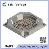 다중 칩 UVC LED 모듈