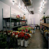 耕作のための冷凍庫、冷蔵室、低温貯蔵および水産養殖