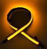 Indicatore luminoso del lavoro dell'indicatore luminoso della tenda dell'indicatore luminoso 12V della stringa del LED
