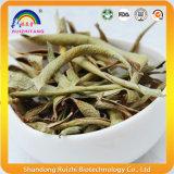 Tè di erbe secco del tè del foglio dell'aloe bio-