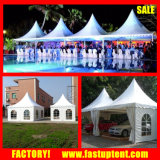 Instant Portable Gazebo Tent 6X6m Good Pagoda Marquee