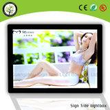 カスタムアクリルの広告LED Framelessの細いライトボックス