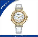 Het verschillende Horloge van de Manier van de Diamant van de Dames van Conbination van de Kleur Model met de Beweging van Japan