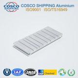 Personalizar 6063-T5 Perfil de aluminio con superficie de cepillado