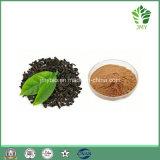 Extrait naturel de thé noir Theaflavins 25%, 40%, 60% (84650-60-2)