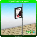 Reclame van openlucht LEIDENE van de Straat de Lichte Pool Lightbox van de Lamp