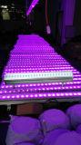 24X10W RGBW LED 벽 세탁기 빛/LED 단계 빛 LED 효력 빛