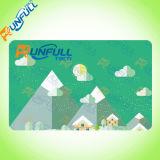 Tarjeta en blanco del PVC de las tarjetas dominantes del hotel