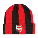 Славным шлем и шарф связанные цветом (JRK216)