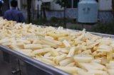 Industrielle automatische Kartoffelchip-Pommes-Frites, die aufbereitende Maschinen herstellen