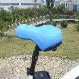 26 Zoll LCD-Bildschirmanzeige-Frauen-Strand-Kreuzer-elektrisches Fahrrad (RSEB-1215)