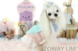 Mignon petit chien de velours de corail de vêtements de coton couche coeur de la Dentelle Lady pet