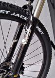 28インチ電気山の自転車カーボンファイバーの電気自転車