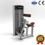 De populaire Commerciële AchterUitbreiding van de Machine van de Oefening van de Apparatuur van de Geschiktheid