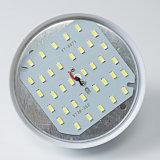 Serie della lampadina T dell'OEM 40W LED del fornitore della Cina nuova con figura della gabbia di uccello