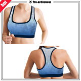 OEM Factory Suablimation Mesh Puls Size Women Sports Sutiã