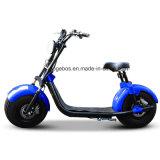 Самый последний тип дешевое Citycoco для мотоцикла колес сбывания 2 электрического