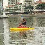 water湖水練習の自転車