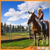 Линейка животных оцинкованных лошадь Ограждения панели, крупного рогатого скота ограждения
