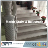 Beautiful Cream Marble Stairs/Step&Riser for Interior Floor Decoration