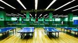 O fabricante profissional da pavimentação dos esportes internos de tênis de tabela do PVC