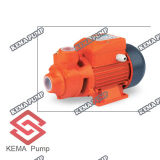 Qb 60 Series Peripheral Pumps для