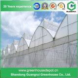 Быть фермером дома полиэтиленовой пленки тоннеля зеленые для растущий овоща/цветка