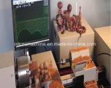 Mini-CNC-hölzerne Fertigkeit-Drehen-Maschine
