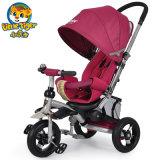 Triciclo del bambino delle rotelle più poco costoso di prezzi 3