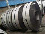 430 acciaio inossidabile Coils/Ba-Cold laminato