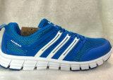 남자와 Lady Shoes Mesh Upper Sport Stock Shoes