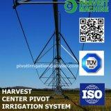 농업 농장 살수 장치를 위한 소형 신식 조정 중심 선회축 관개 기계