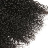 Best Selling Onda Encaracolado 100% virgem Extensão de cabelo humano Indian Cabelos encaracolados tecem Bundles